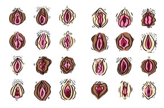 vaginas2