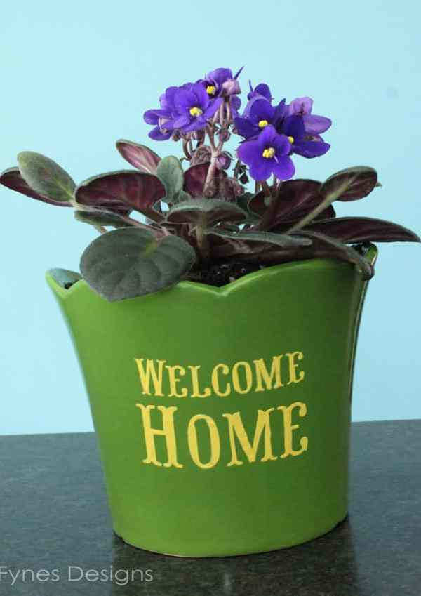 Pretty Plant Pot with Plaid and Folk Art Enamels