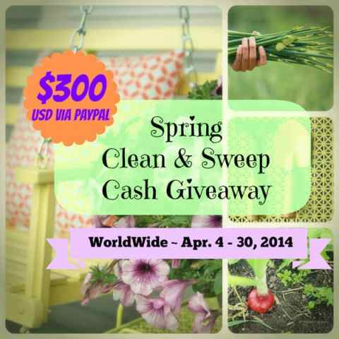 CLean sweep giveaway #giveaway #cash #prize
