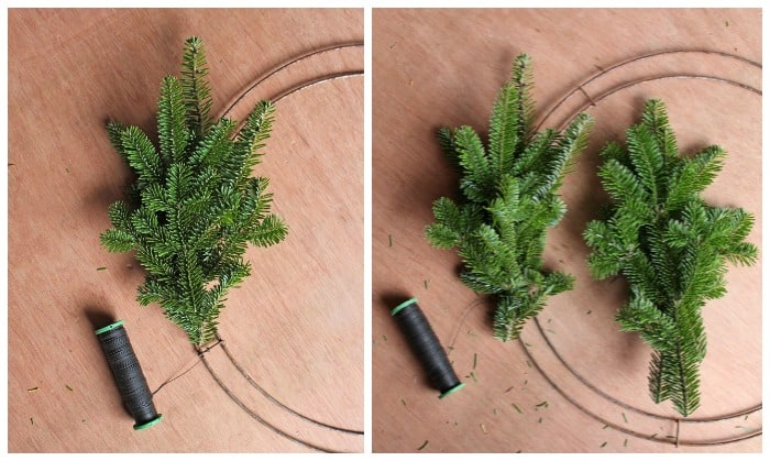 step 2 making a Christmas wreath | Christmas Wreath by popular Canada DIY blog, Fynes Designs: image of a pine tree branch being attached to a flat ring with floral wire.