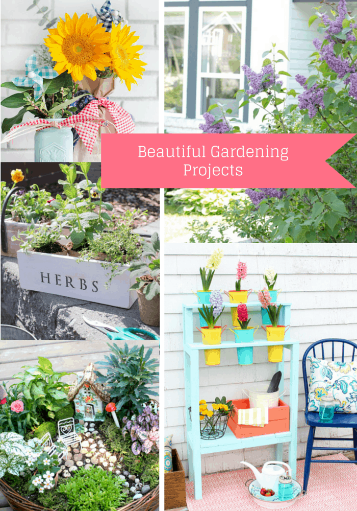 Beautiful Gardening Projects for the Outdoor Extravaganza
