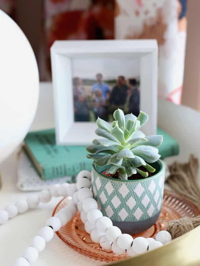 Colorful Modern Living Room Design featured by top US design blog, Fynes Designs: image of succulent in green pot