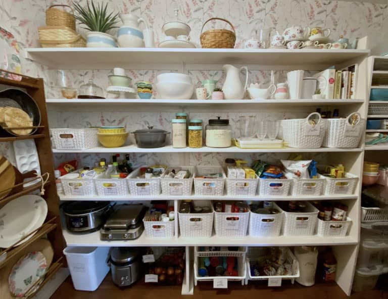 Free pantry Bins labels to organize everything |Pantry Organization Tips by popular Canada interior design blog, Fynes Designs: image of an organize walk-in pantry.