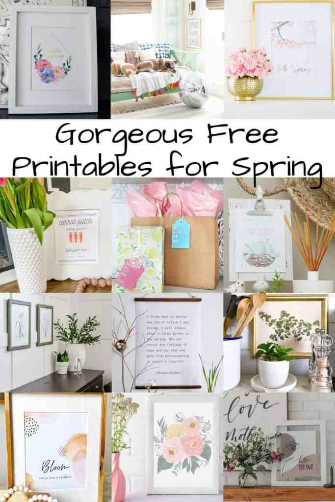 Free Spring Printable Collection |Printable Floral Card by popular Phoenix lifestyle blog, Love and Specs: Pinterest image of printable spring art.