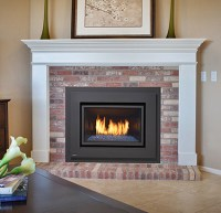 Gas Fireplace Inserts | Modern Gas Burning Inserts | Fort ...