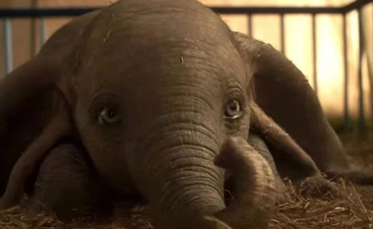 Geek Review:  Dumbo