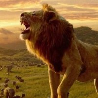 Geek Review:  The Lion King