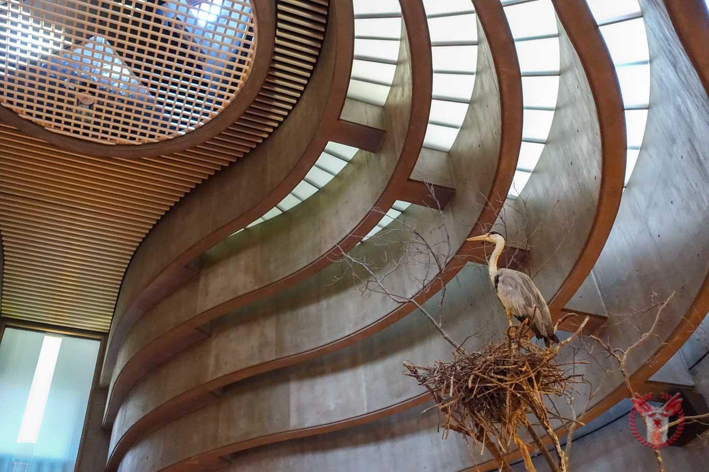 Kushiro wetland observatory 5
