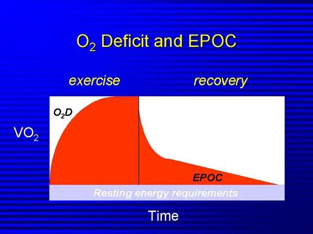El estado EPOC puede prolongarse para durar hasta 40 horas.