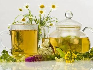 herbal « Infusiones para la belleza del rostro
