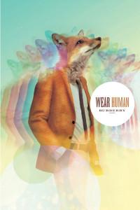 Imprimeurile cu vulpi si lupi, tendintele impuse de marile case de moda si preluarea lor de catre brandurile mass-market - Zara, H&M, Bershka