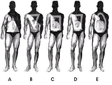 Tipurile de corp la barbati