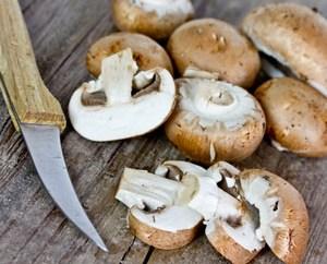 Ciulama de ciuperci brune cu mamaliga