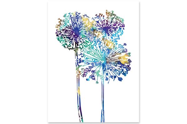 Affisch Allium blågrön