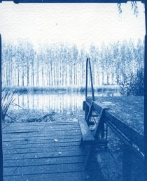 Deep East III. – 10x15cm cyanotype contact print