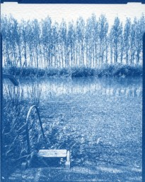 Deep East IV. – 10x15cm cyanotype contact print