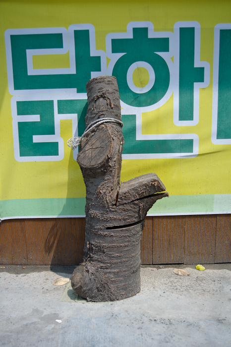 GHarhoff_Seoul-24