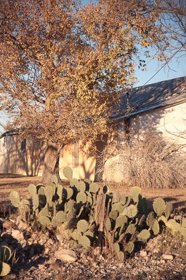 GHarhoff_Texas_160120