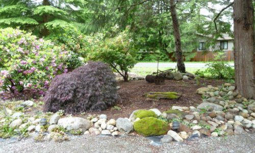 Maple Valley Fixer — Soooo Serene!