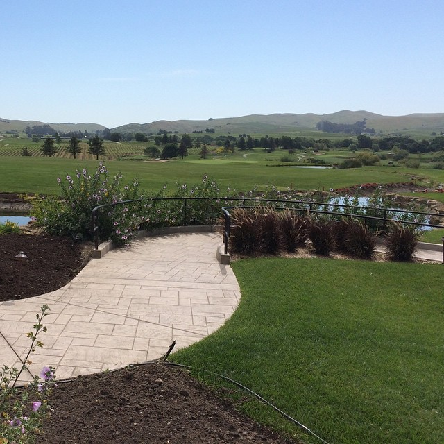 Beautiful day in Napa for my first golf tournament with uncle Jim :-)