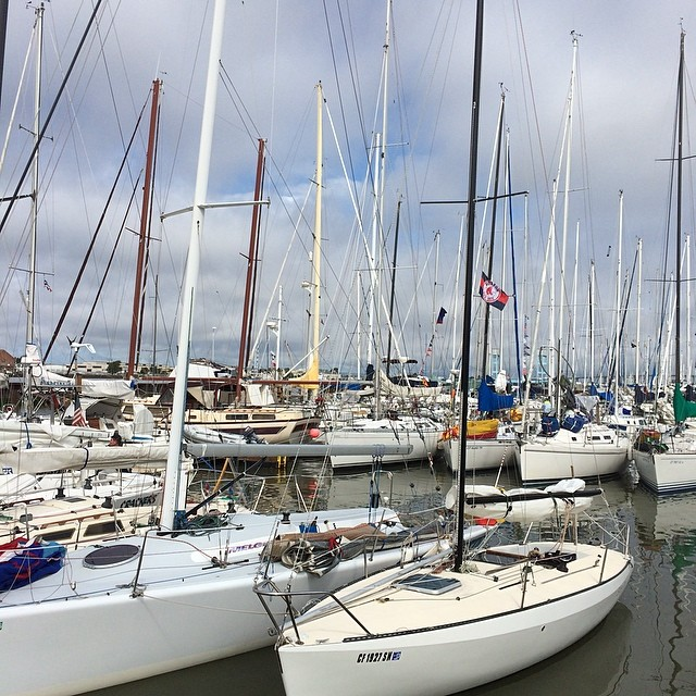 Day 2 of the Great Vallejo Race
