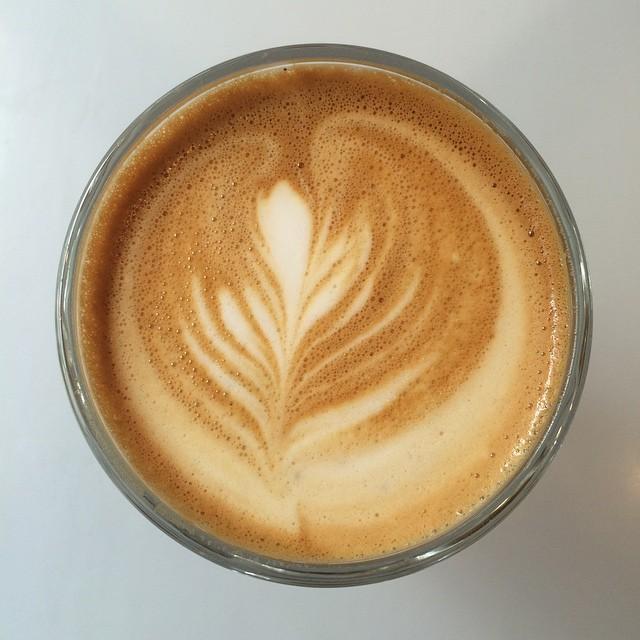 Lovely delicate Gibraltar @moderncoffee