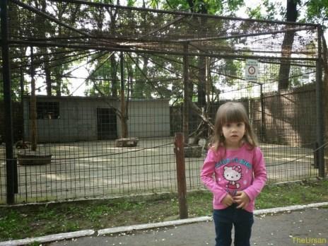 Sara la Zoo Braila Romania 12