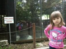 Sara la Zoo Braila Romania 16