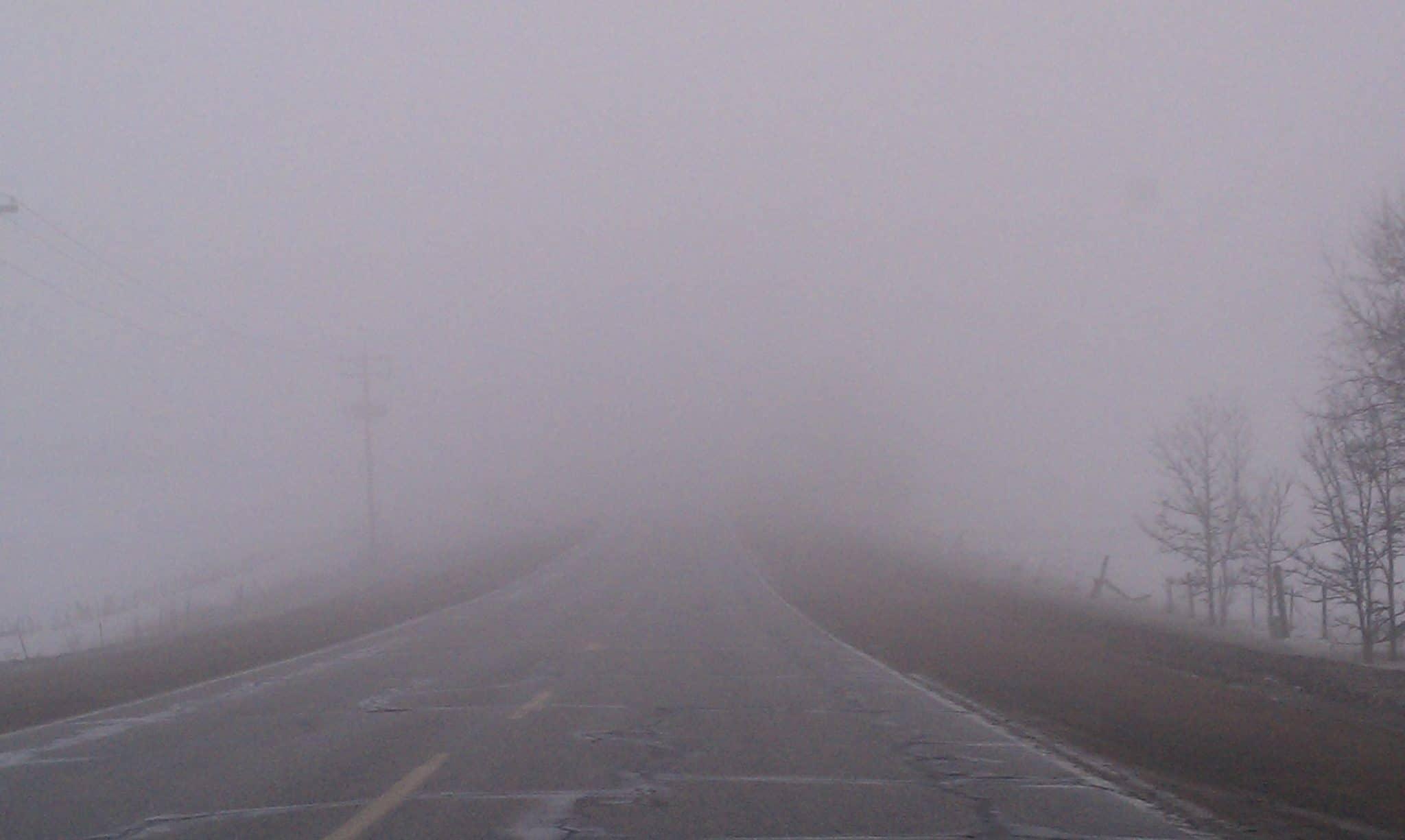 Proiectoare de ceata
