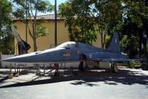 Freedom Fighter & Hawk