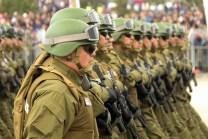 Fuerzas para la Araucanía