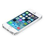 ドコモのiPhone5sMNP一括0円!※有料コンテンツ30個)に釣られた消費者の末路…