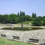 『ポケモンGO』のレアモンスターが出ると話題の世田谷公園 名古屋の鶴舞公園に次いで大騒動に