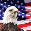 お前らほんと米国大好き過ぎだろwww アメリカの製品・サービスに依存し過ぎwwwwwww