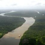 両親が虎に食われたワイが復讐を誓いアマゾン川で巨大ワニと戦う話