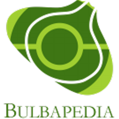 Bulbapedia 2021: The One and Only Pokémon encyclopedia Community called bulbapedia