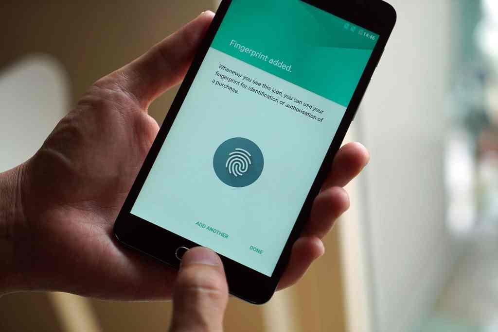 flash-plus-2-fingerprint