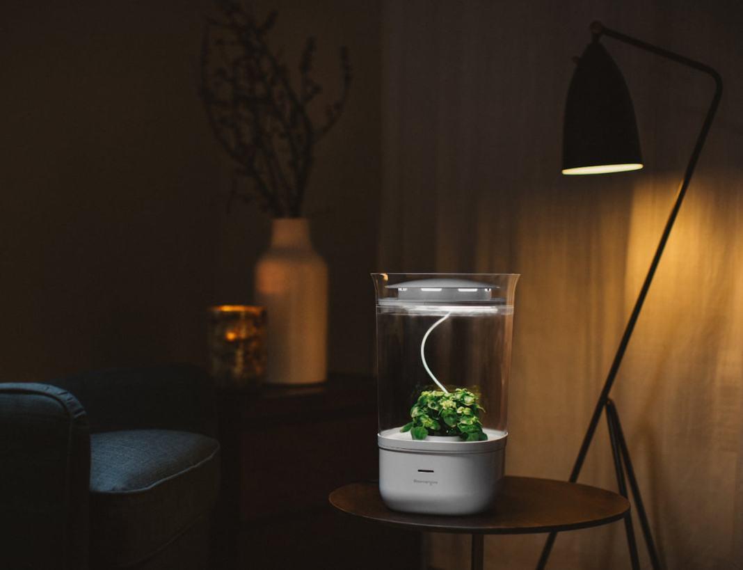 Bloomengine Smart Indoor Planter