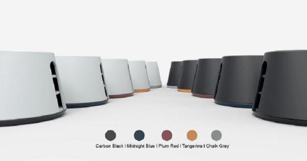 noah-color