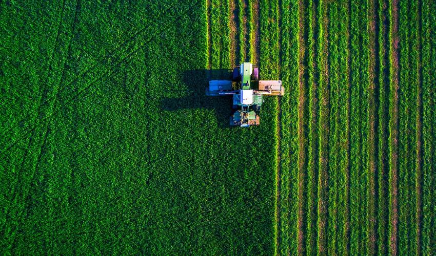 Ripresa agricoltura