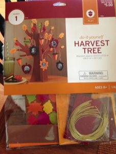 Target $5 craft kit