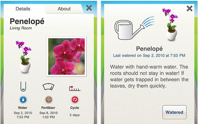 app Koubachi para plantas