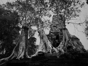 Reclaiming the Temple Preah Palilay, Angkor Thom, Siem Riep, Cambodia Preah Palilay was an active religious and governmental site between the 12th and 13th centuries. It fell into disuse and was slowly reclaimed by the jungle in the late 13th century. In the early 1900s, restoration efforts began but were halted in the late 1900s by the Khmer Rouge. During the reign of the Khmer Rouge, much of the Angkor Thom complex reverted to jungle or was actively disassembled. Preah Palilay is currently scheduled for further restoration efforts, but no dates have been set.