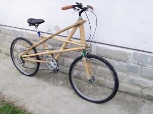BICI Bamboo 3