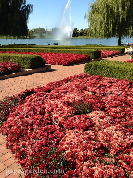Chicago Botanic Gardens October 2, 2013
