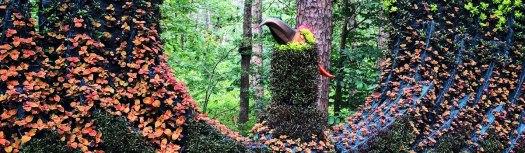 Garvan Gardens, University of Arkansas