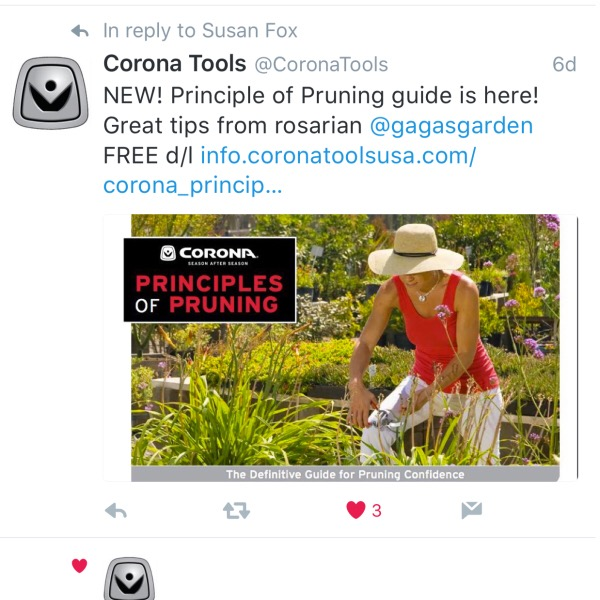 'Corona Tools' Principals of Pruning Guide