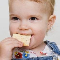 baby eating cracker