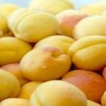 Armenian apricot export hits record