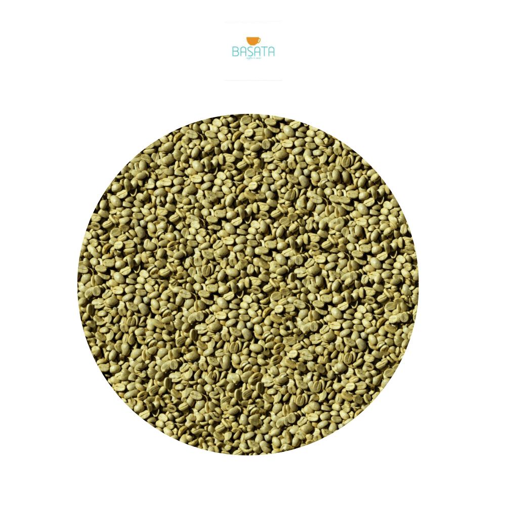 قهوة مختصة خضراء كولومبيا سوبريمو